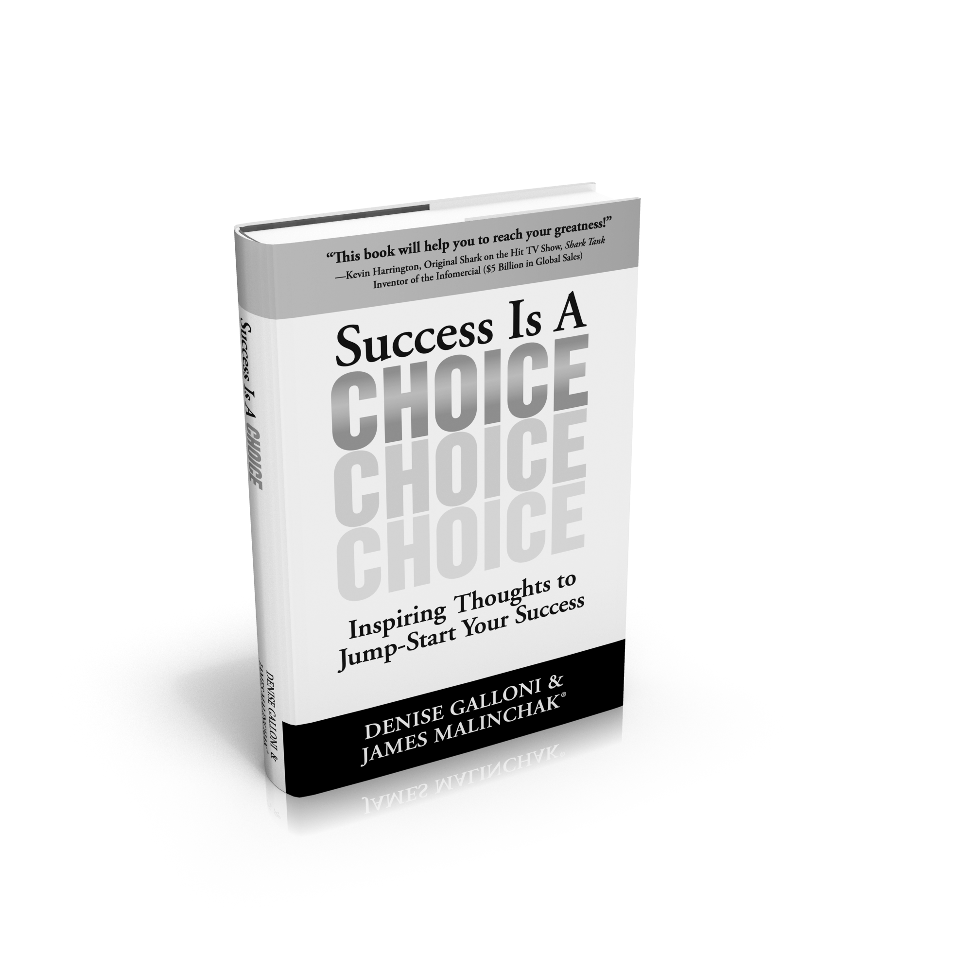 Sucess is a Choice by Denise Ann Galloni and James Malinchak